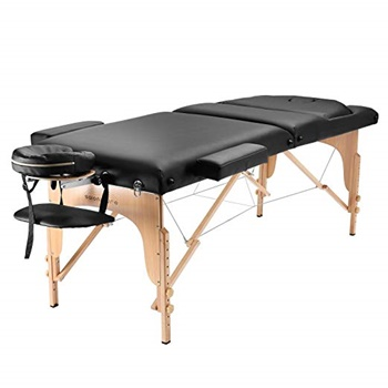 Saloniture Professional Portable Massage Table with Backrest B00Q554JZQ